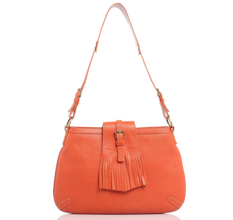 Burberry Orange Leather Shoulder Bag