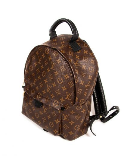 Louis Vuitton Monogram Canvas Palm Springs PM Backpack